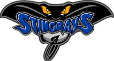 It's a sad day for the Hull Stingrays and the EIHL.